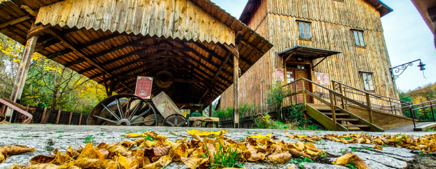 Skansen Rzeki Pilicy – pierwsze w Polsce muzeum poświęcone rzece